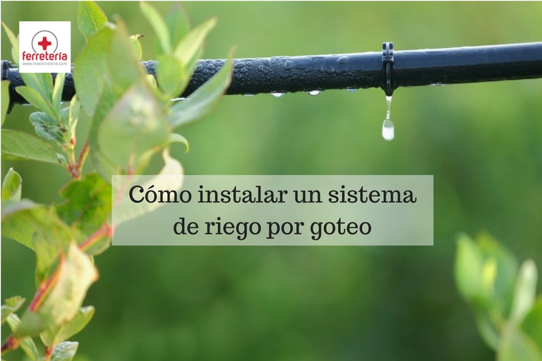 C mo instalar un sistema de riego por goteo - Tipos de riego por goteo ...