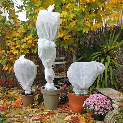 proteger-plantas-del-frio