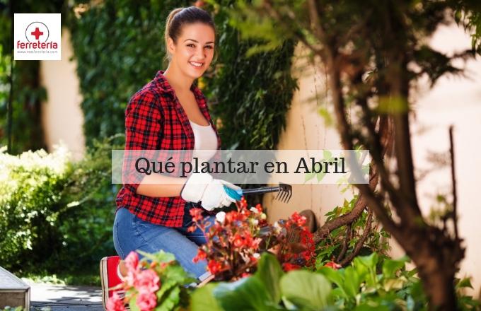 ¿Qué plantar en Abril?