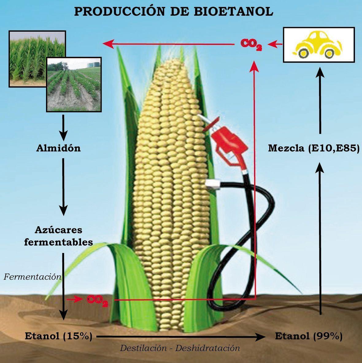 ciclo bioetanol para biochimeneas