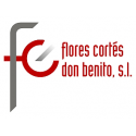 Flores Cortes