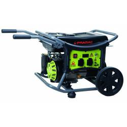 Generador Gas. Motor Pramac Ohv 230v 50hz C/rda Gr/ver Wx320