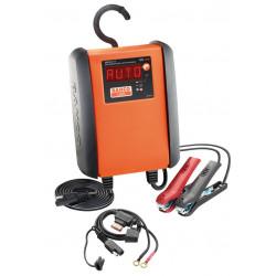 Cargador Bateria 10-230 Ah 12 V