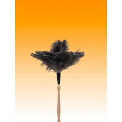 Plumero Avestruz M/torneado 60 Cm