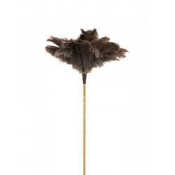 Plumero Avestruz M/varilla 60 Cm