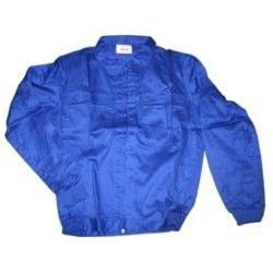 Cazadora Algodon Azul Bigferr T50
