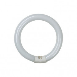 Tubo Fluorescente Circular Trifosforo 22w 6500k Garza