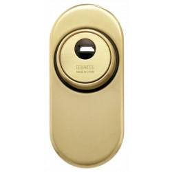 Escudo Seguridad Cerrado Con Escudo Conico Oro