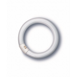 Tubo Ilumin Fluoresc Trifosforo Circular 40w 6500 K Osram