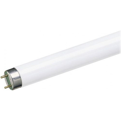 Tubo Fluorescente Trifosforo 36w 6500k Sylvania