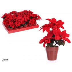 Maceta Poinsettia Juinsa 24 Cm