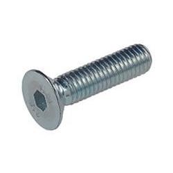 Tornillo Allen 7991 10.9 10x060mm Cinc Fontana 100 Pz