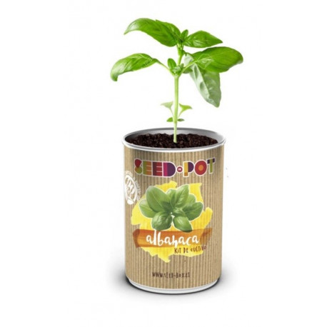 Huerto Urbano Kit Albahaca Seedbox Lata Sustrato+semilla