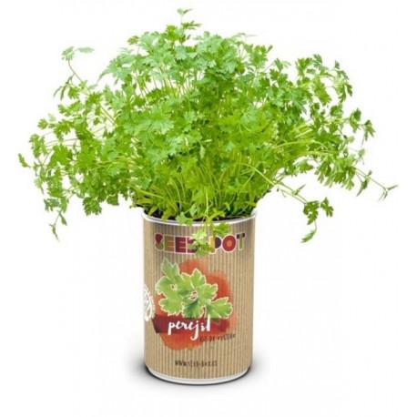 Huerto Urbano Kit Perejil Seedbox Lata Sustrato+semilla
