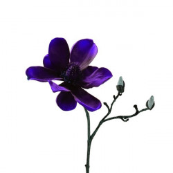 Flor Nav. Magnolia Ro 30cm Pl Rosso Leonardo