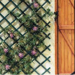 Celosia Jard 1x2mt Exten Nortene Pvc Ver Trelliflex